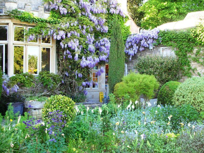 England house w/wisteria